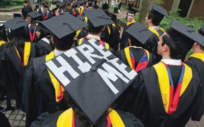 Job market dire for university graduates